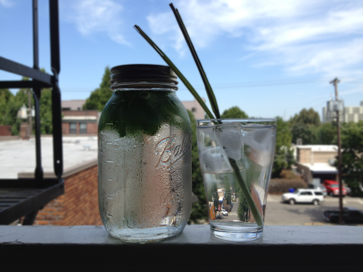 lemongrass-mint-water