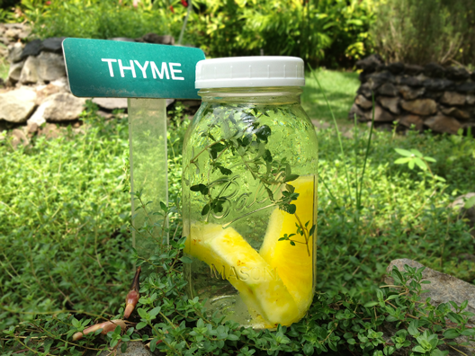 pineapple-thyme-infused-water