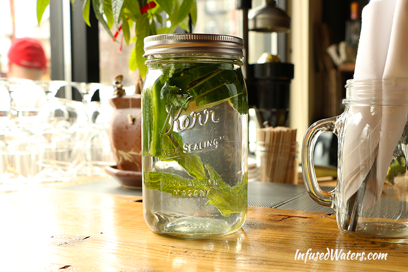 cucumber-jalapeno-mint-infused-water