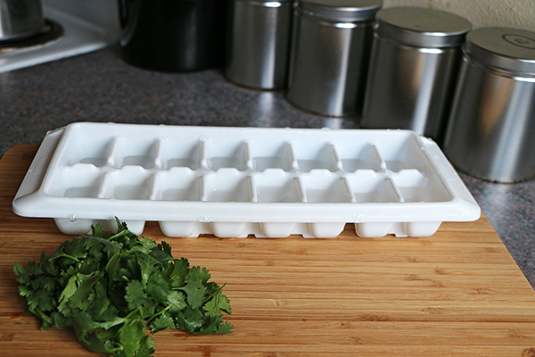 How to make infused water ice cubes