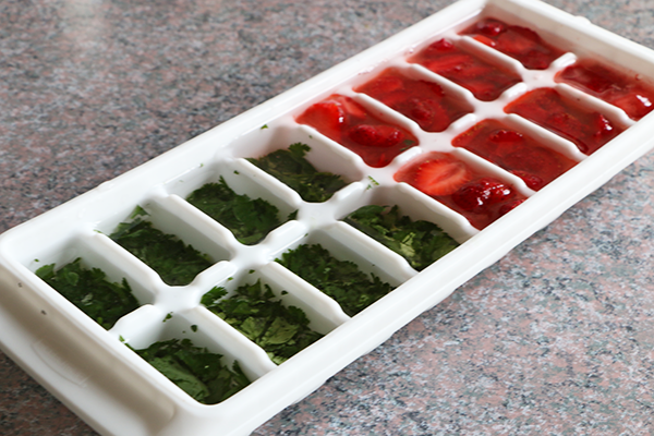 The secret to making infused water ice cubes
